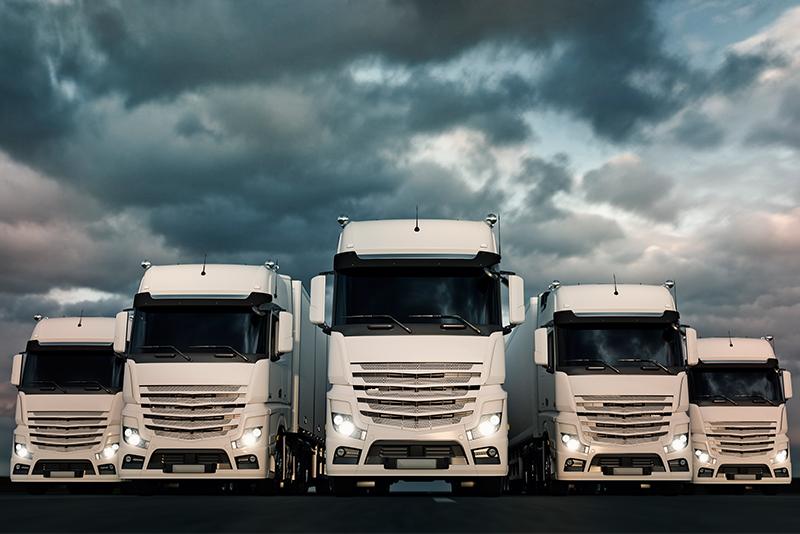 73305643-White-Truck-Fleet
